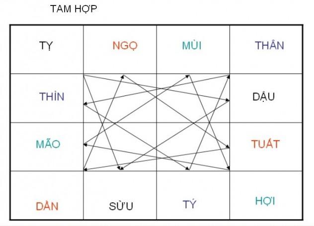 TAM HOP