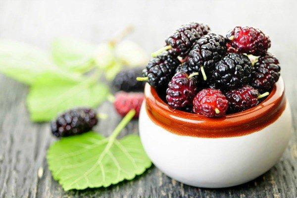 Dâu tằm tốt cho người tiểu đường và cao huyết áp