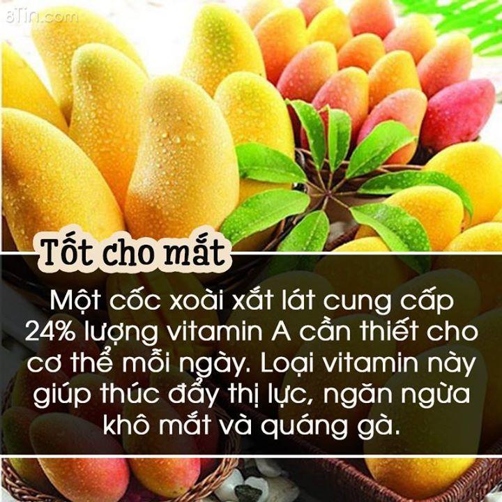 xoai-co-rat-nhieu-cong-dung-tot-do-nha-cac-me-da (4)