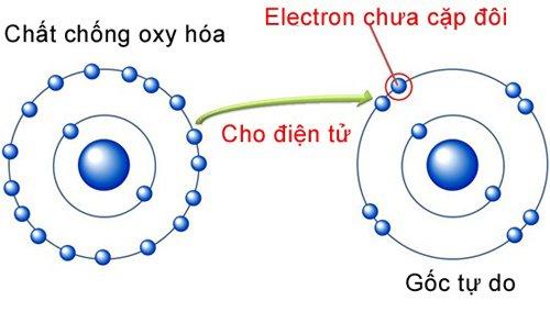 chat-chong-oxy-hoa