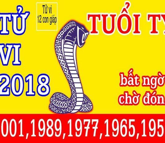 Tử vi tuổi Kỷ Tỵ 1989 năm 2018