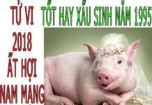 TỬ VI 2018 TUỔI ẤT HỢI 1995 - NAM MẠNG
