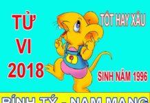 TỬ VI 2018 TUỔI BÍNH TÝ 1996 - NAM MẠNG