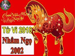 TỬ VI 2018 TUỔI NHÂM NGỌ 2002 - NAM MẠNG