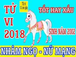 TỬ VI 2018 TUỔI NHÂM NGỌ 2002 - NỮ MẠNG