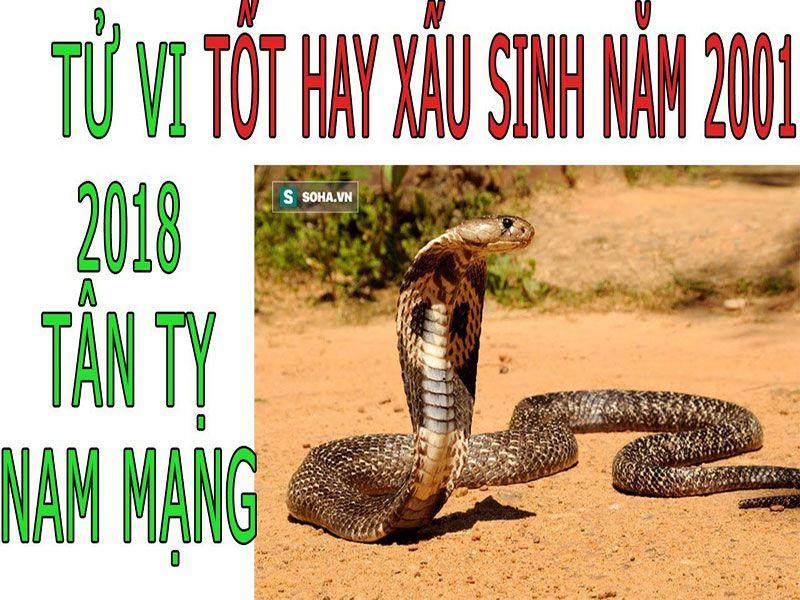 TỬ VI 2018 TUỔI TÂN TỴ 2001 - NAM MẠNG