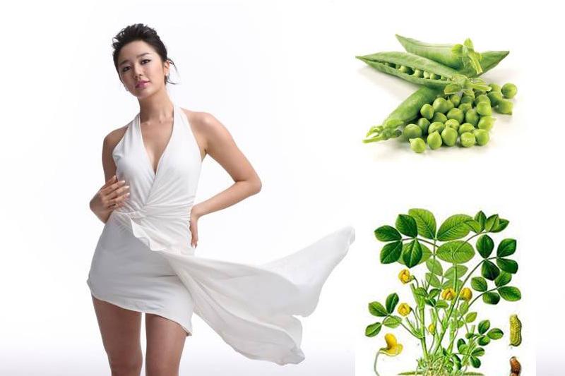 đậu lăng có tốt cho giảm cân không