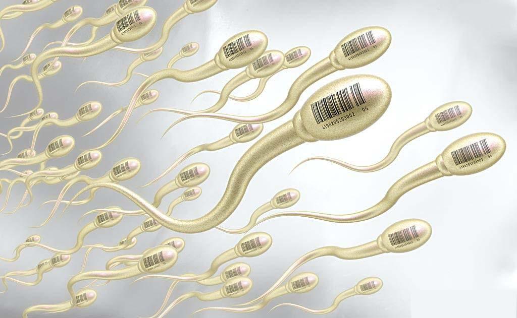 có thai nhanh hơn