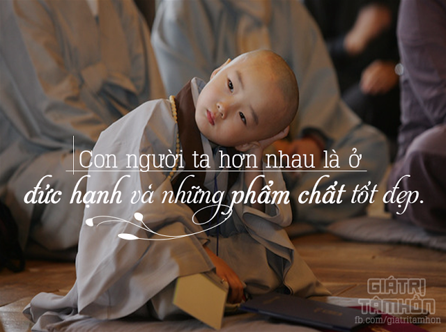 gia-tri-tam-hon-duc-hanh