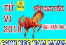 TỬ VI 2018 TUỔI CANH NGỌ 1990 - NAM MẠNG