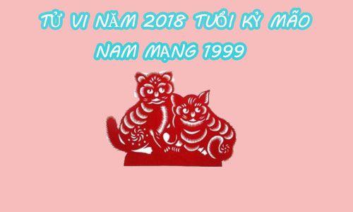 TỬ VI 2018 TUỔI KỶ MÃO 1999 - NAM MẠNG