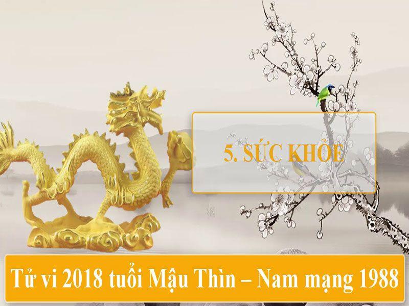 TỬ VI 2018 TUỔI MẬU THÌN - NAM MẠNG