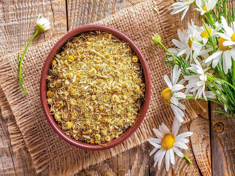 Điều trị hội chứng ruột kích thích với Gừng và Trà hoa cúc