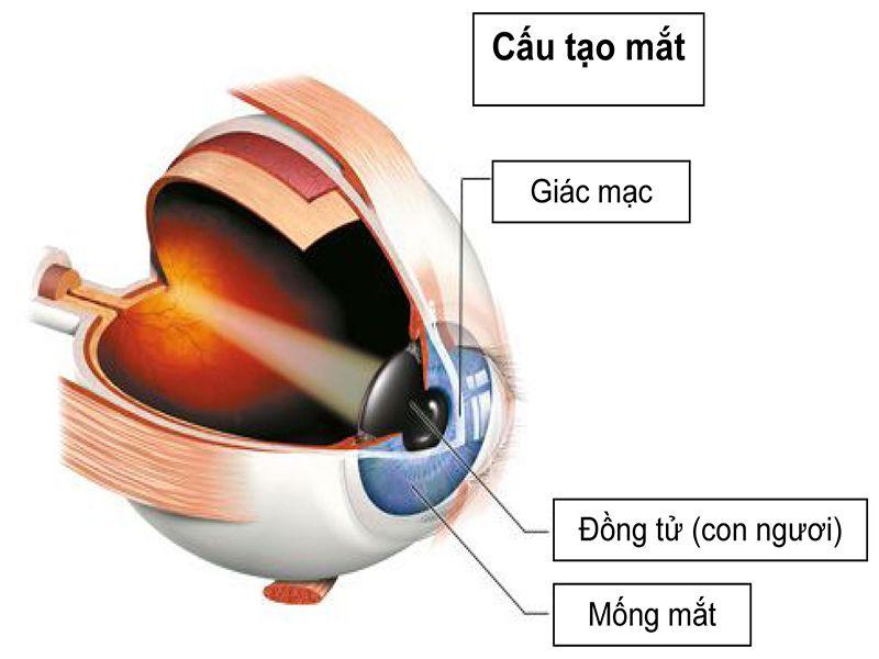 5 sự thật về phẫu thuật mổ mắt PRK