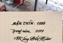TỬ VI TUỔIMẬU THÌN 1988NĂM 2019