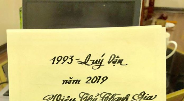 Quý Dậu 1993 tử vi năm 2019