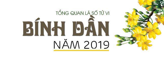 TỬ VI TUỔI BÍNH DẦN1986NĂM 2019