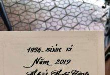 TỬ VI TUỔIBÍNH TÝ 1996NĂM 2019