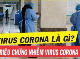 Vrus corona 2019 - 10 giải đáp về bệnh viêm đường hô hấp cấp do nCoV
